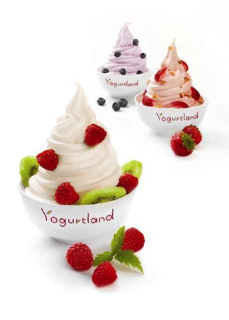 yogurtland_closeup1.jpg